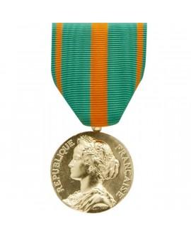 Médaille Evadés Bronze Doré